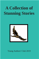 #2169 A Collection of Stunning Stories