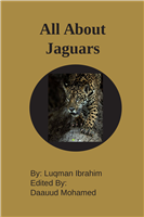 #2108 All About Jaguars