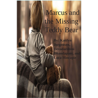 #2061 Marcus and The Missing Teddy Bear